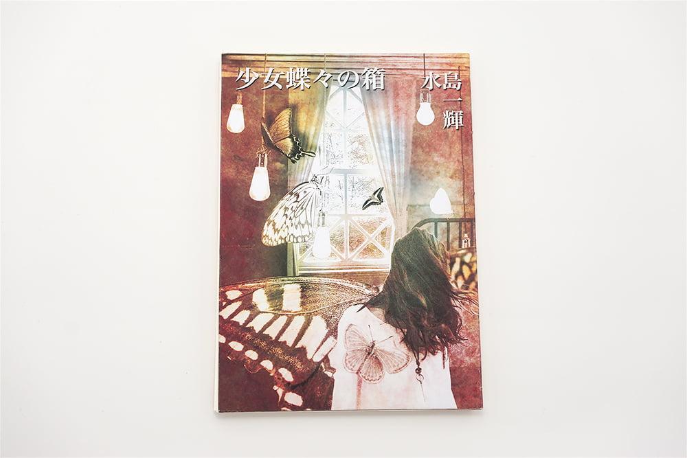 少女蝶々の箱手製本の表紙