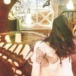 少女蝶々の箱表紙
