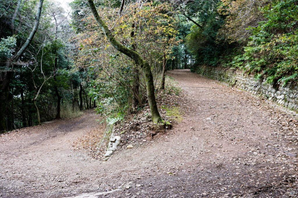 大吉山登山道