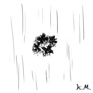 一文物語365 挿絵 黒い蝶の群がり