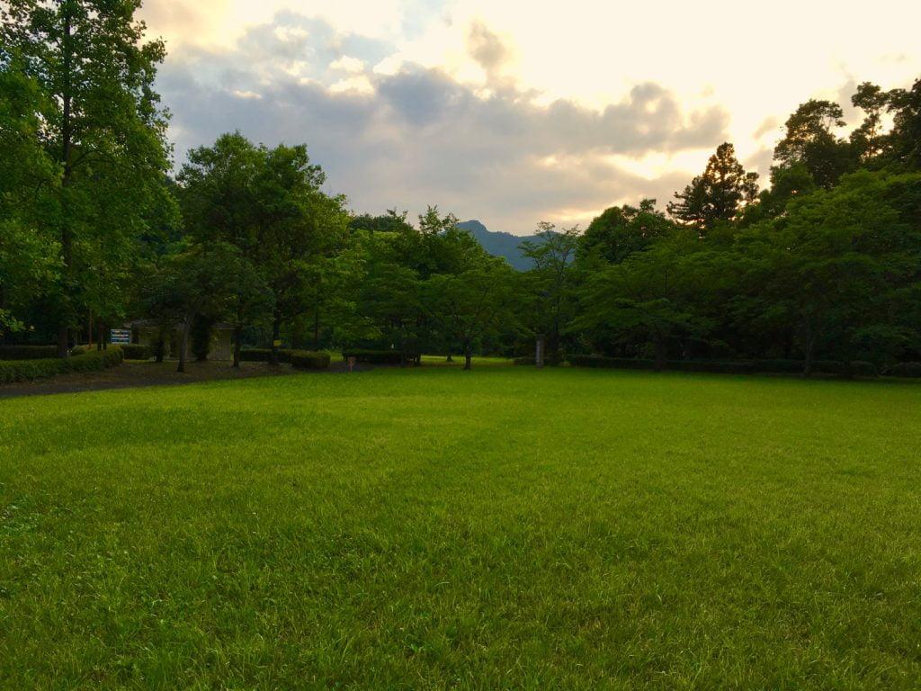 緑に囲まれた広場