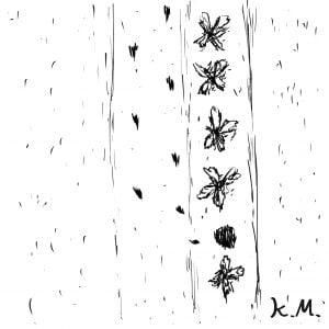 一文物語365 挿絵 畑から走り逃げた大根の足跡