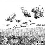 一文物語365 挿絵 麦畑