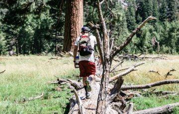 森の中へ進む男性の後ろ姿