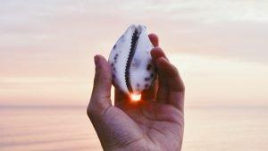 貝を持つ手