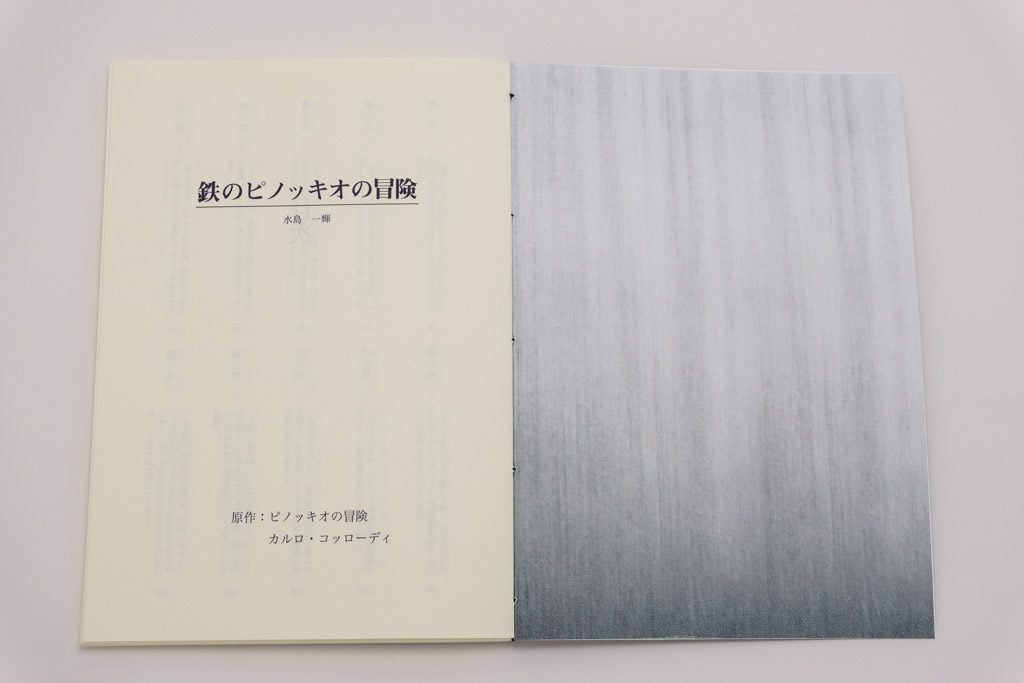 鉄のピノッキオの冒険手製本小説の表紙内側