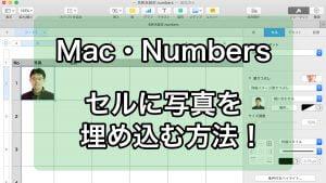 MacのNumbers セルに写真を埋め込む方法!