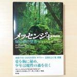 メッセンジャー 緑の森の使者 by ルイス・ローリー の小説の表紙
