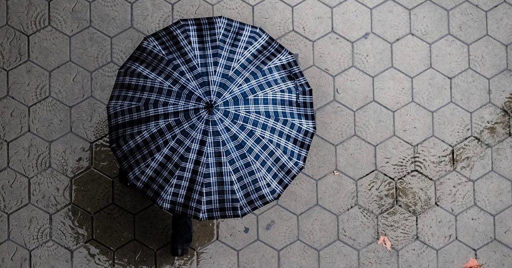 開いた傘を上から見た所