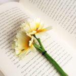 開いた本の上に置かれた花