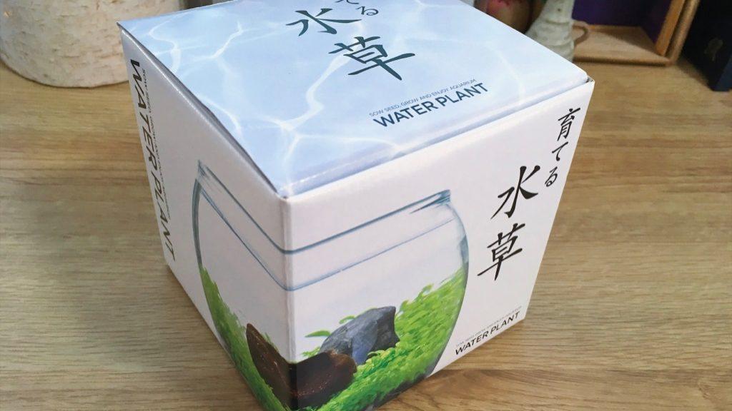 育てる水草キット
