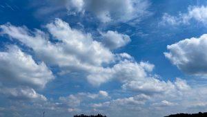 秋の空気の午前中からウォーキングに行き、自然体になりつつある私の変化や気づきをまとめた素僕ルーム...